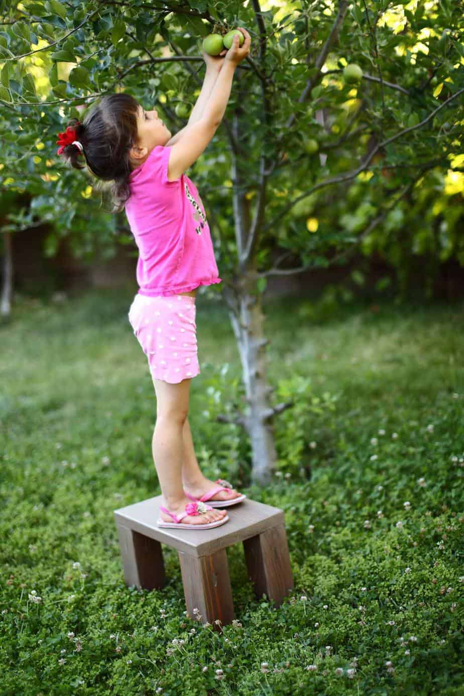 girl reaching for apples on the step stool
