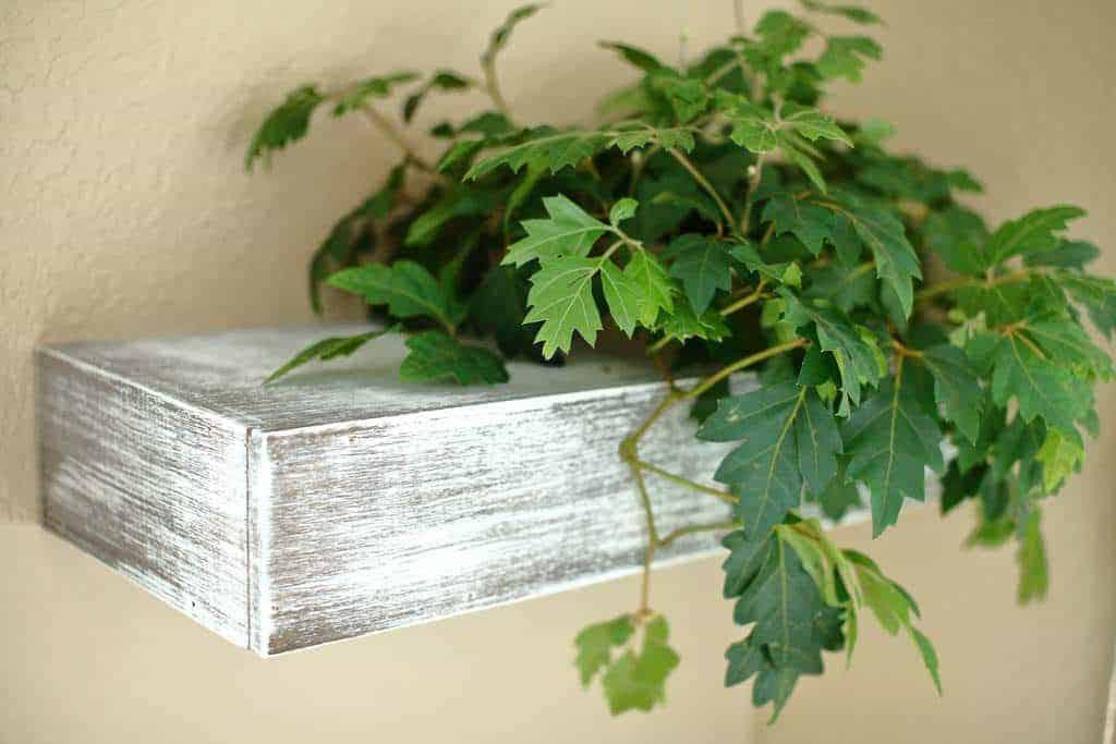 DIY Floating Shelf for a Plant