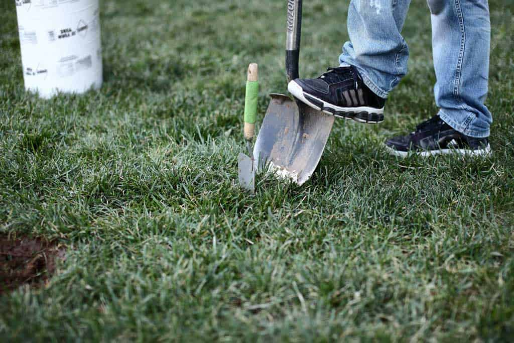using shovel to dig out ground for diy stepping stone