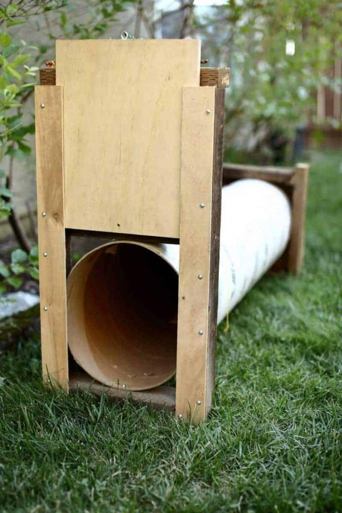 DIY skunk trap using tube form