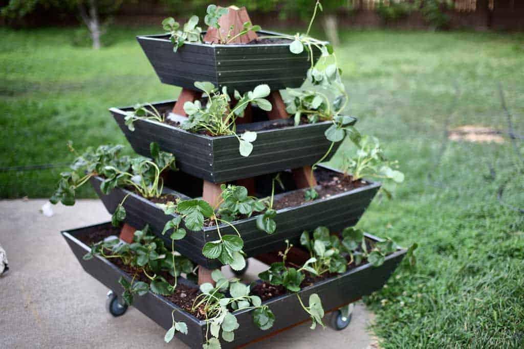 DIY Pyramid gutter planter