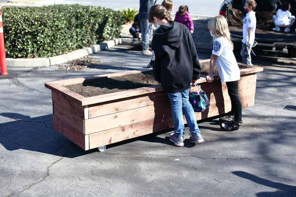 filling planter box with dirt