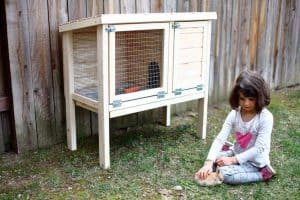 DIY rabbit hutch for indoor and outdoor