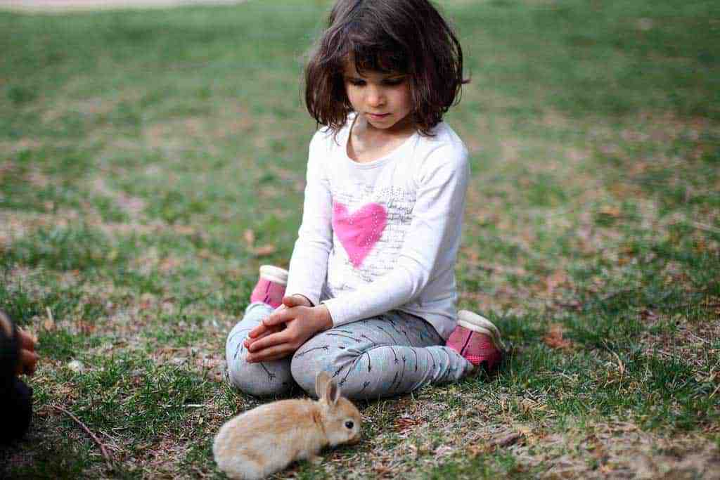 girl with a rabbit pet