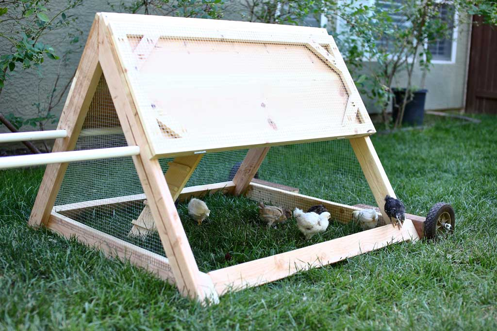DIY mobile triangle shape chicken coop